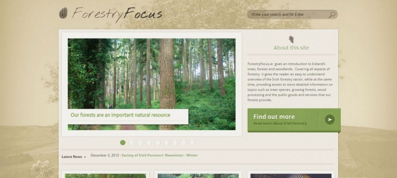 Forestry Focus